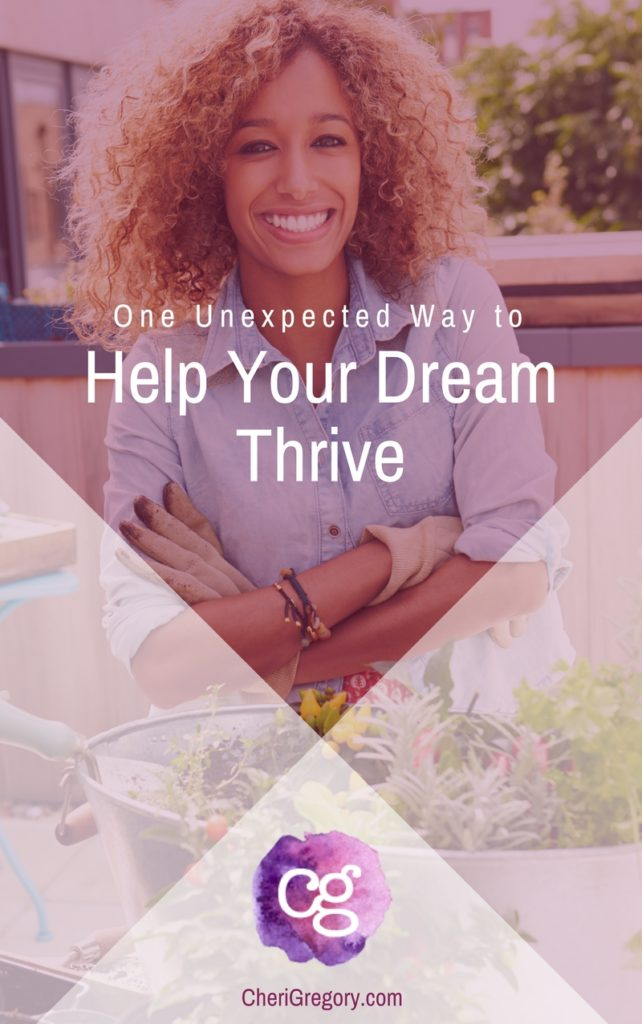 One Unexpected Way to Help Your Dream Thrive